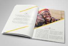 Melusi Holdings Company Profile Design